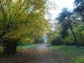 Arboretum Simeria
