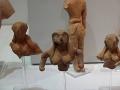 Muzeul de Arheologie