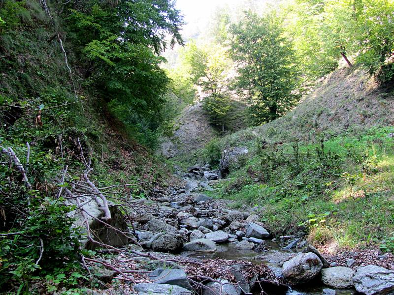 Valea Doabrei